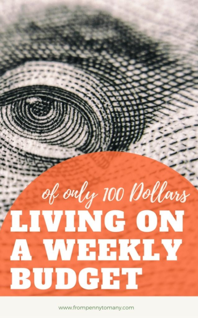 Living on a weekly budget of only 100 Dollars