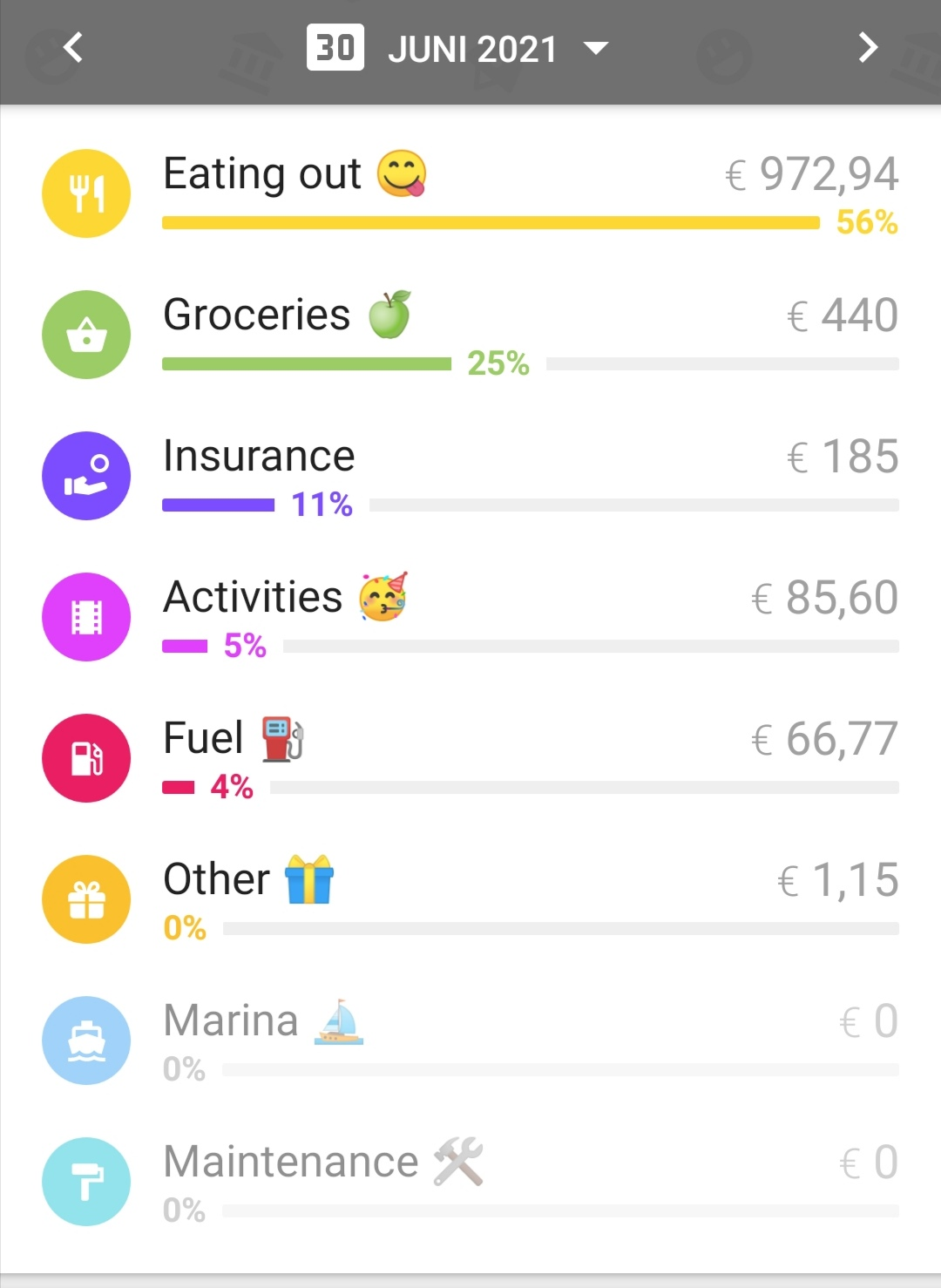 Category break down monthly expenses